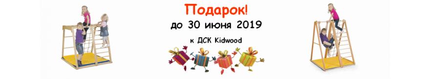 Подарок к ДСК Kidwood