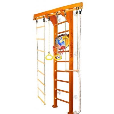 Шведская стенка Kampfer Wooden Ladder Wall Basketball Shield