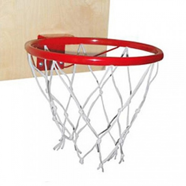 Баскетбольное кольцо со щитом для ДСК Ранний старт